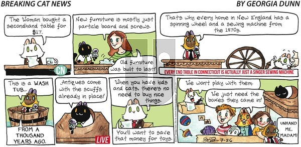 Breaking Cat News on Sunday July 26, 2020 Comic Strip
