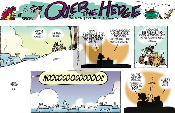 Over the Hedge on Sunday January 6, 2019 Comic Strip