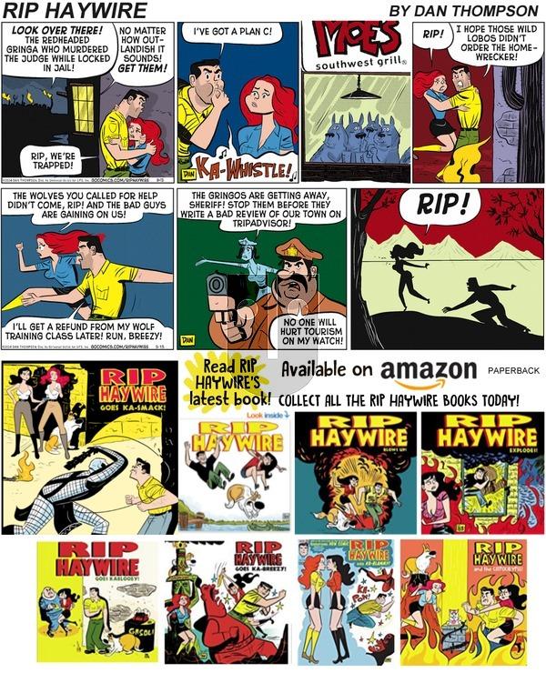 Rip Haywire - Sunday November 17, 2019 Comic Strip