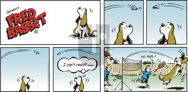 Fred Basset on Sunday August 29, 2021 Comic Strip