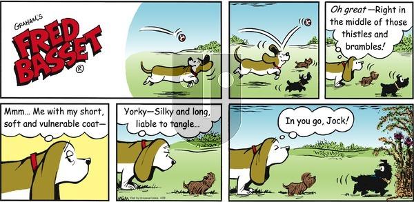 Fred Basset on Sunday April 28, 2013 Comic Strip