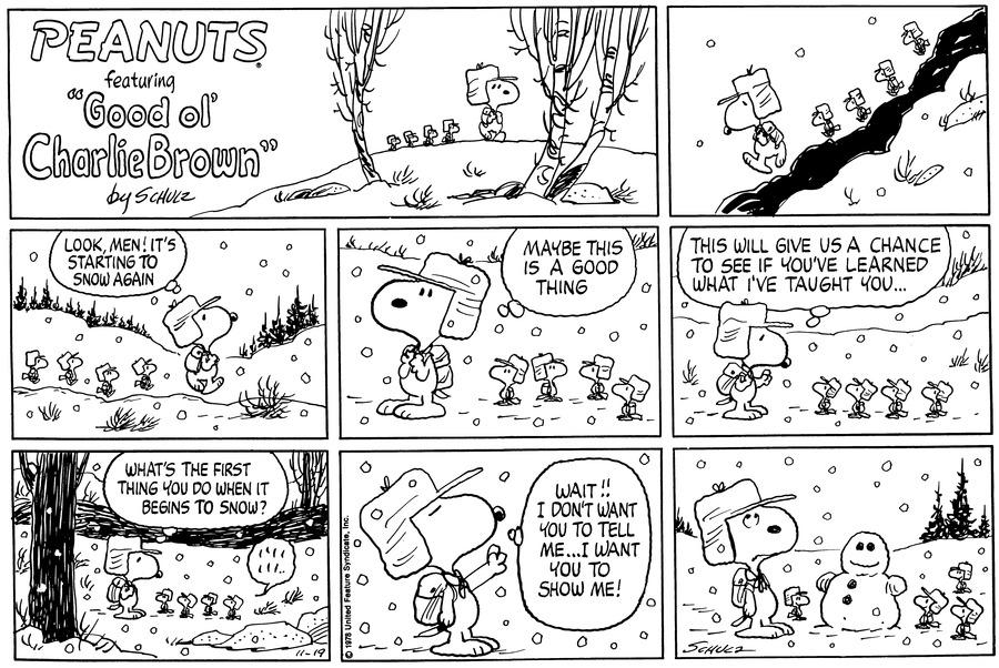 Peanuts Comic Strip for November 19, 1978
