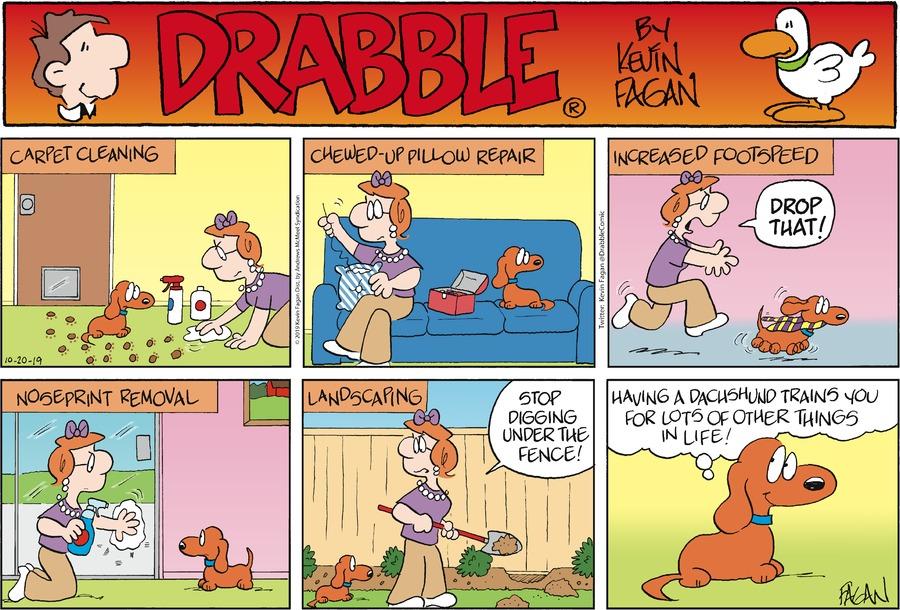Drabble Comic Strip for October 20, 2019