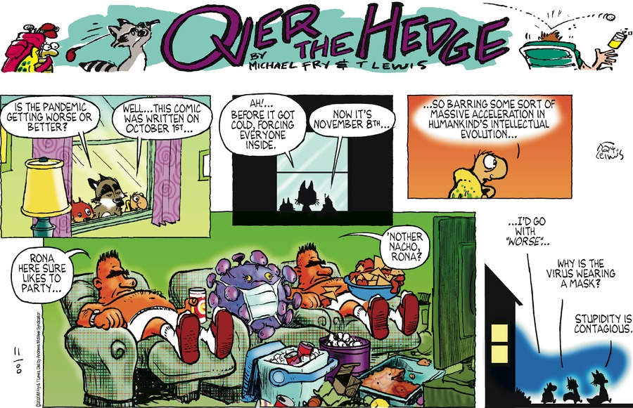 Over the Hedge Comic Strip for November 08, 2020