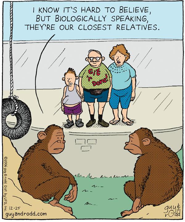 Brevity Comic Strip for December 25, 2006