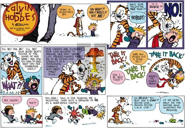 Calvin and Hobbes - Sunday February 14, 1993 Comic Strip