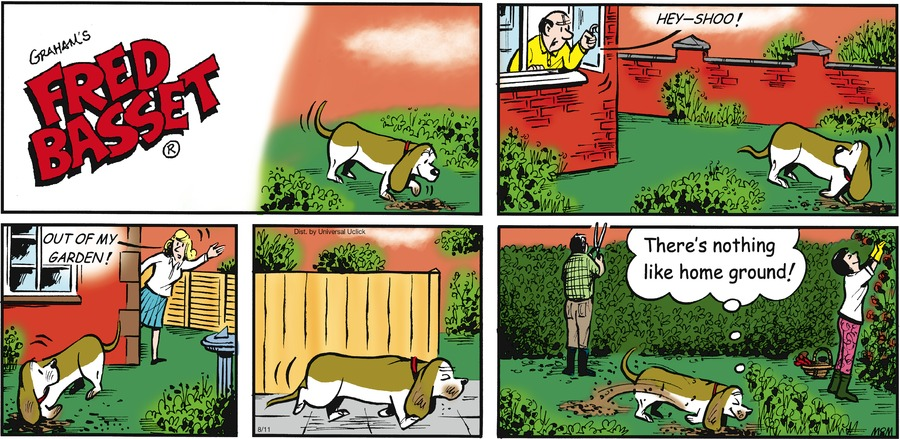 Fred Basset Comic Strip for August 11, 2013