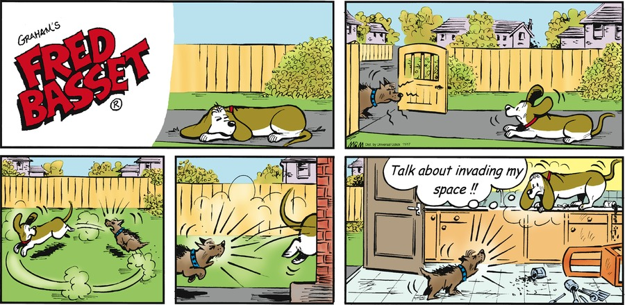 Fred Basset Comic Strip for November 17, 2013