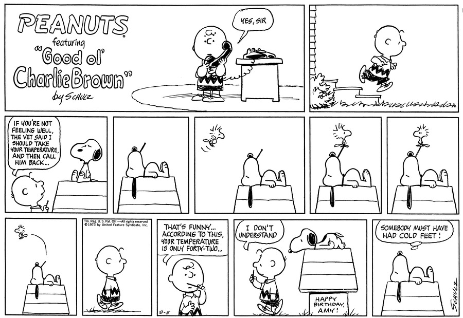 Peanuts Comic Strip for August 05, 1973