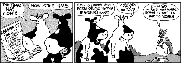 2 Cows and a Chicken Comic Strip for August 07, 2008