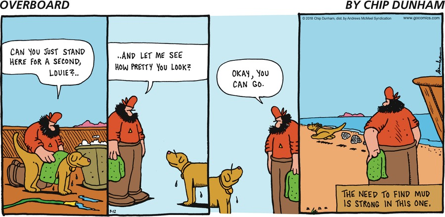 Overboard for Aug 12, 2018 Comic Strip