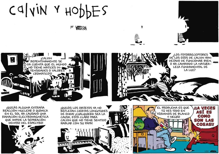 Calvin and Hobbes en Español by Bill Watterson on Sun, 31 Jan 2021