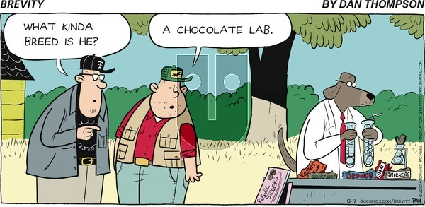 Brevity on Sunday June 7, 2020 Comic Strip