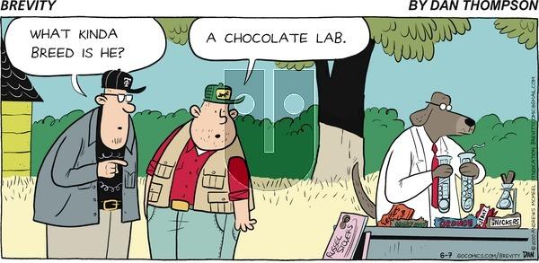 Brevity - Sunday June 7, 2020 Comic Strip