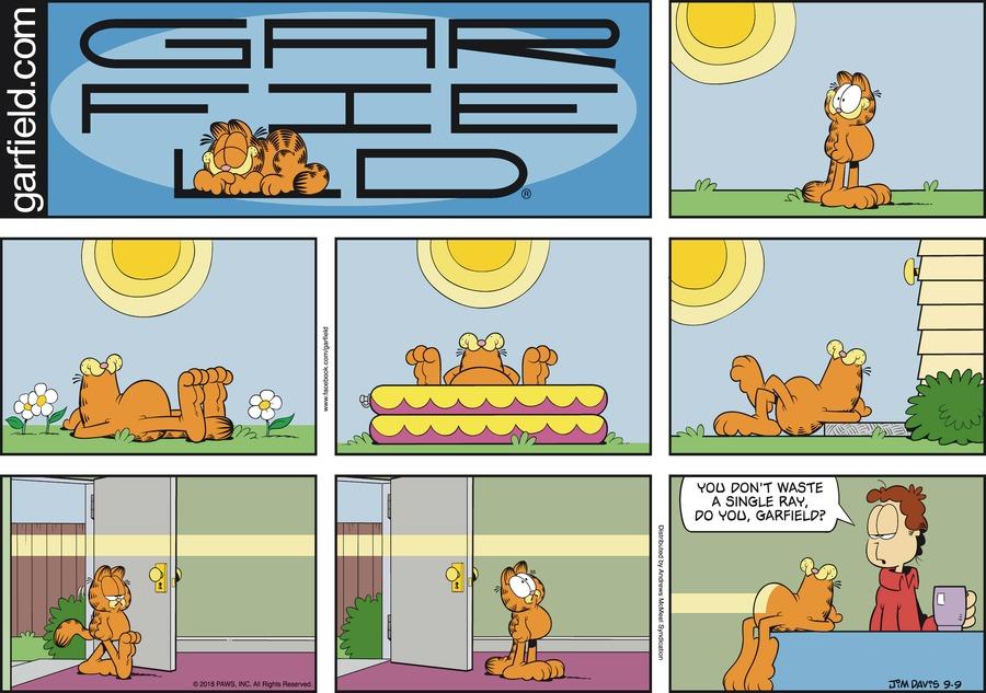Garfield Comic Strip for September 09, 2018
