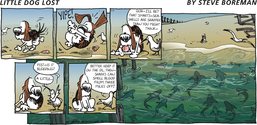Little Dog Lost for Aug 31, 2014 Comic Strip