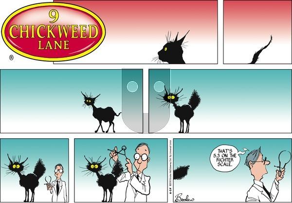 9 Chickweed Lane on Sunday June 26, 2016 Comic Strip