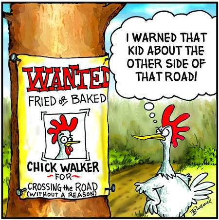 Birdbrains for Nov 14, 2012 Comic Strip