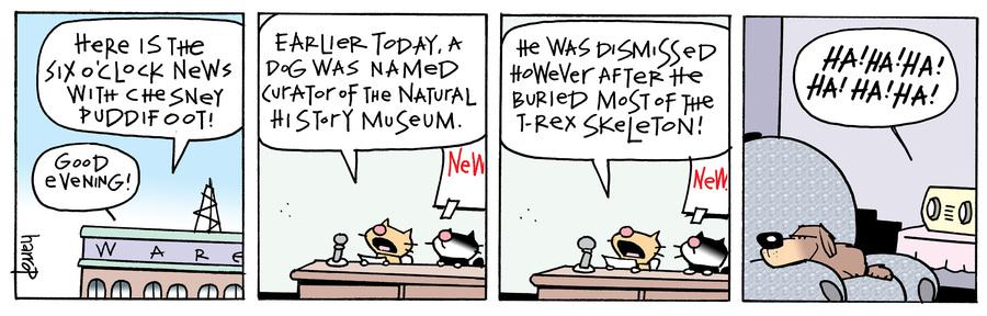 Ten Cats Comic Strip for July 17, 2021