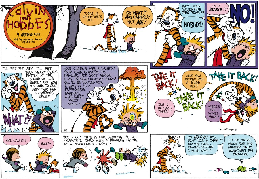 Calvin and Hobbes Comic Strip for February 14, 1993