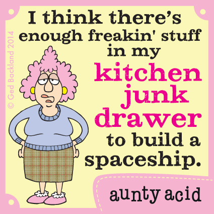 I think there's enough freakin' stuff in my kitchen junk drawer to build a spaceship.
