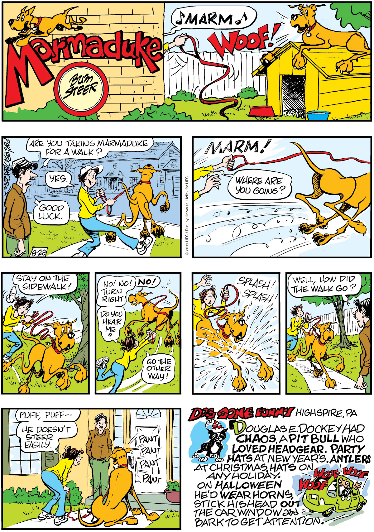Dottie: Marm!  Marmaduke: WOOF!  Phil: Are you taking Marmaduke for a walk?  Dottie: Yes.  Phil: Good luck.  Dottie: Marm! Where are you going? Stay on the sidewalk! No! No! NO! Turn right! Do you hear me? Go the other way! <Splash! Splash!>  Phil: Well, how did the walk go?  Dottie: <Puff, puff >He doesn't steer easily. Dog Gone Funny: Highspire, PA Douglas E. Dockey had Chaos, a pit bull who loved headgear. Party hats at New Year's. Antlers at Christmas hats on any holiday. On Halloween he's wear horns stick his head out the car window and bark to get attention.