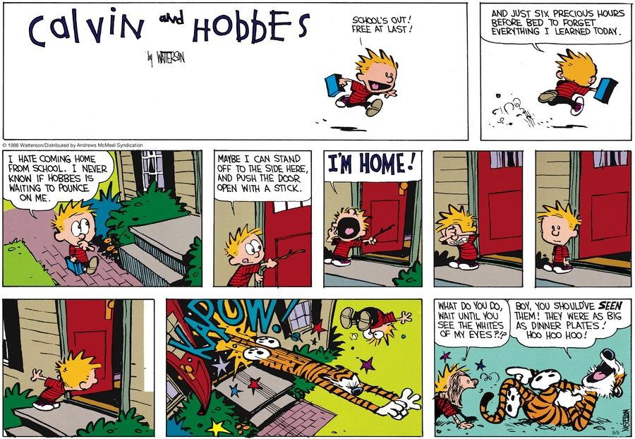 Calvin and Hobbes Comic Strip for September 09, 2018