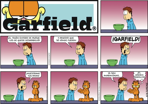 Collectible Print of garfield en español