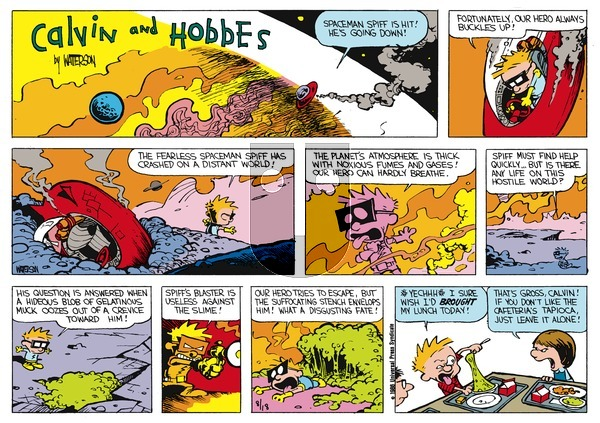 Calvin and Hobbes - Sunday October 27, 1991 Comic Strip