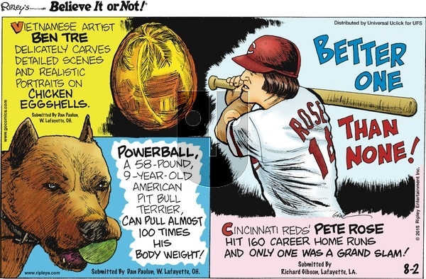 Ripley's Believe It or Not on Sunday August 2, 2015 Comic Strip