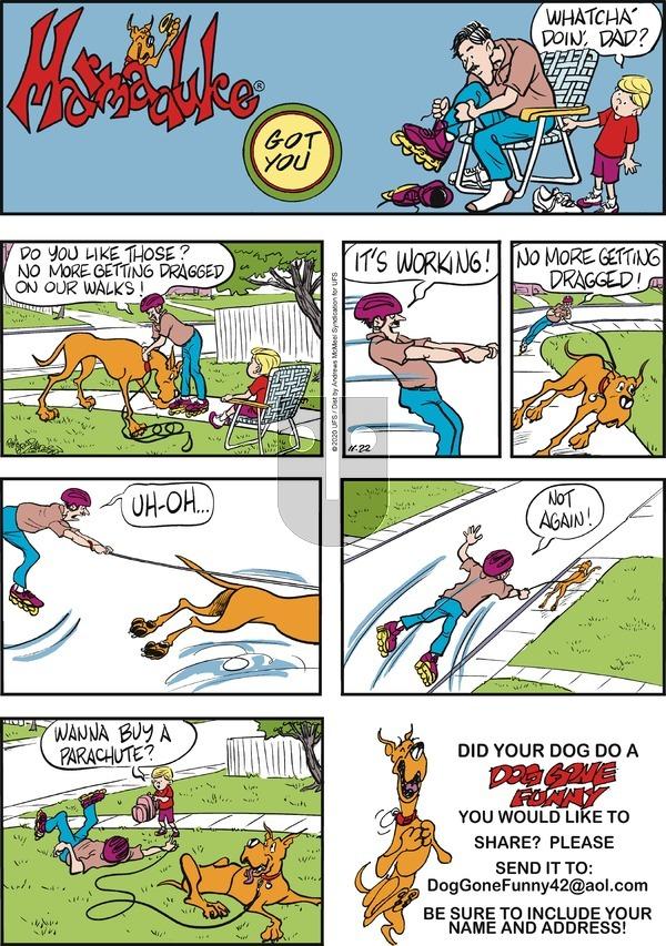 Marmaduke - Sunday November 22, 2020 Comic Strip