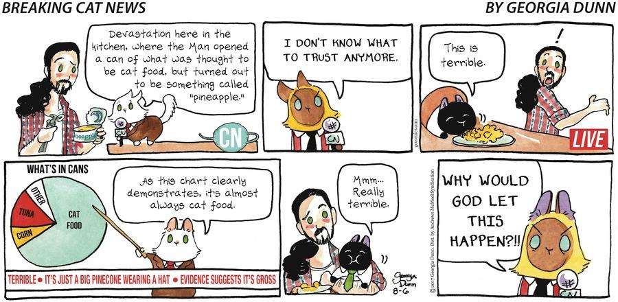 Breaking Cat News for Aug 6, 2017 Comic Strip