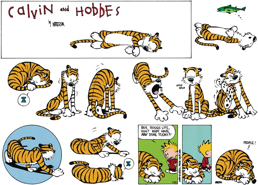 Calvin and Hobbes Comic Strip for May 22, 1994