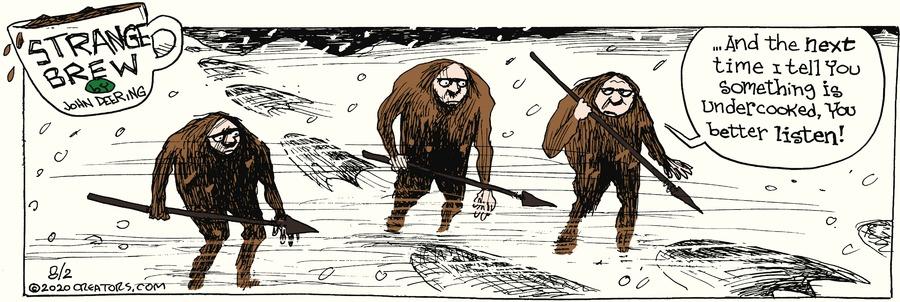 Strange Brew Comic Strip for August 02, 2020