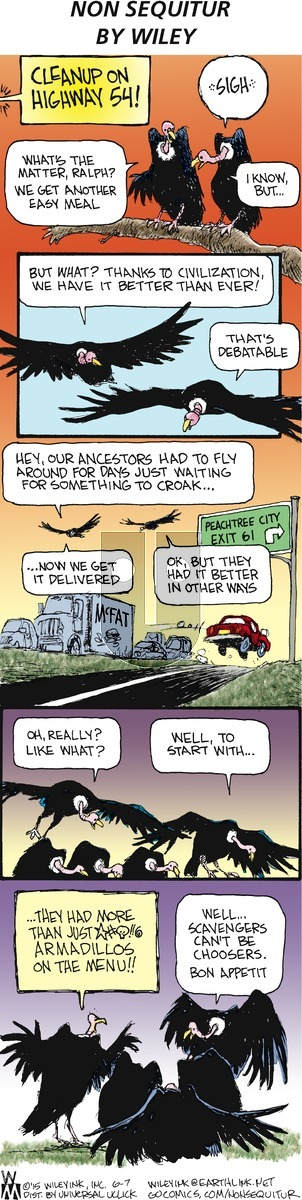 Non Sequitur on Sunday June 7, 2015 Comic Strip