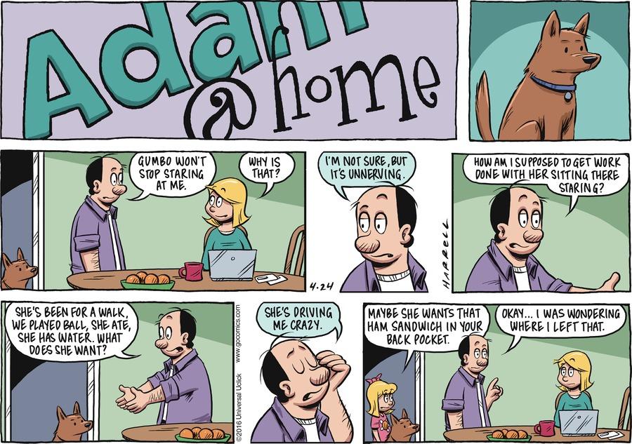 Adam@Home Comic Strip for April 24, 2016