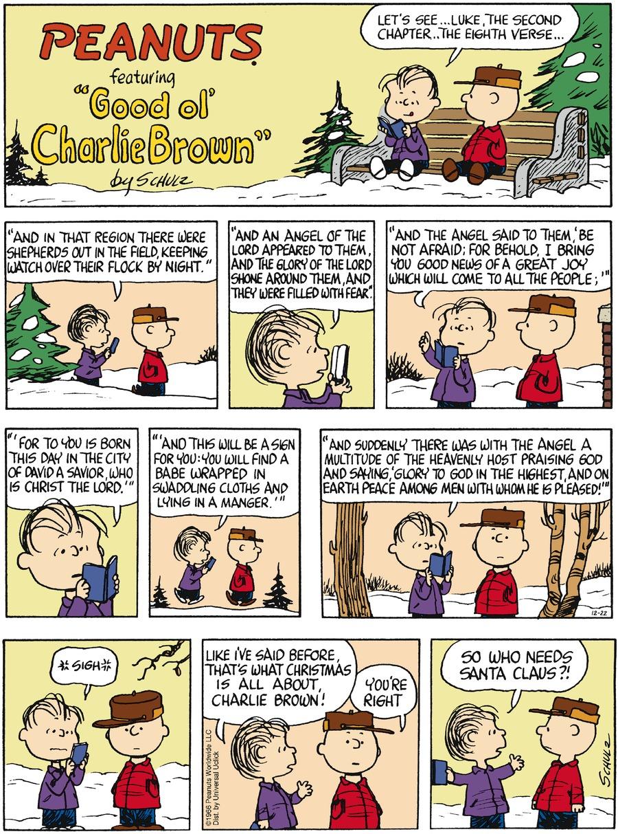 Peanuts Comic Strip for December 22, 2013
