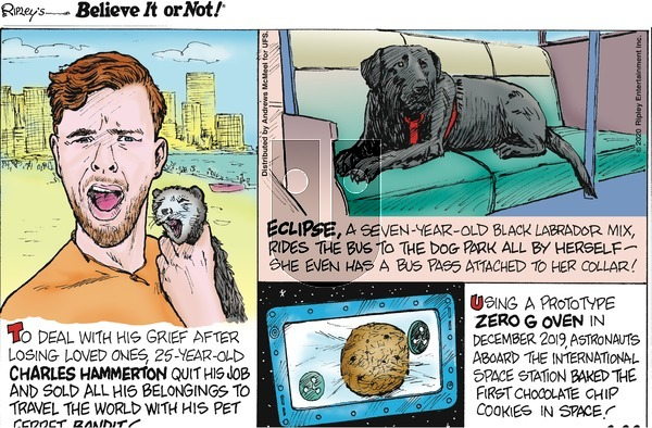 Ripley's Believe It or Not on Sunday March 22, 2020 Comic Strip