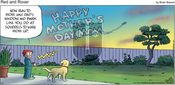 Red and Rover - Sunday May 9, 2021 Comic Strip