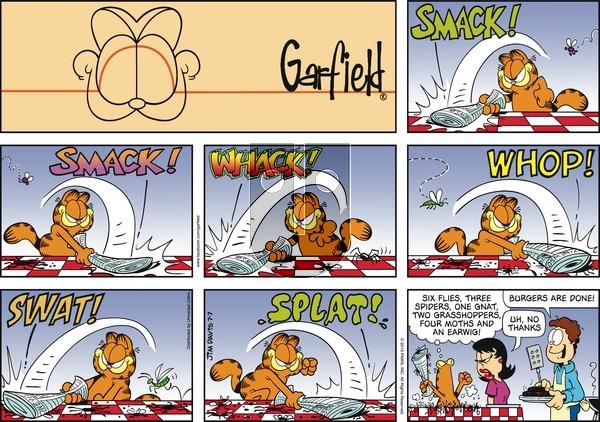 Garfield on Sunday July 7, 2013 Comic Strip