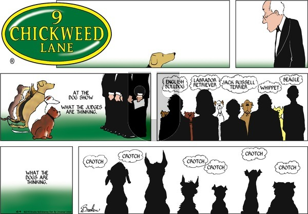 9 Chickweed Lane on Sunday December 4, 2016 Comic Strip