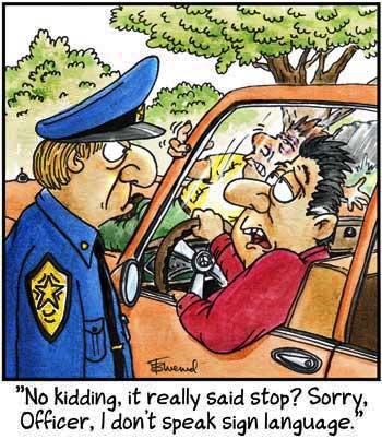 Birdbrains for Jul 11, 2012 Comic Strip