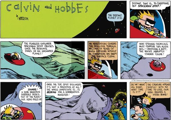 Calvin and Hobbes - Sunday February 28, 2021 Comic Strip