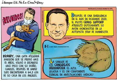 Ripley's ¡Aunque Usted no lo Crea! Comic Strip for August 01, 2021