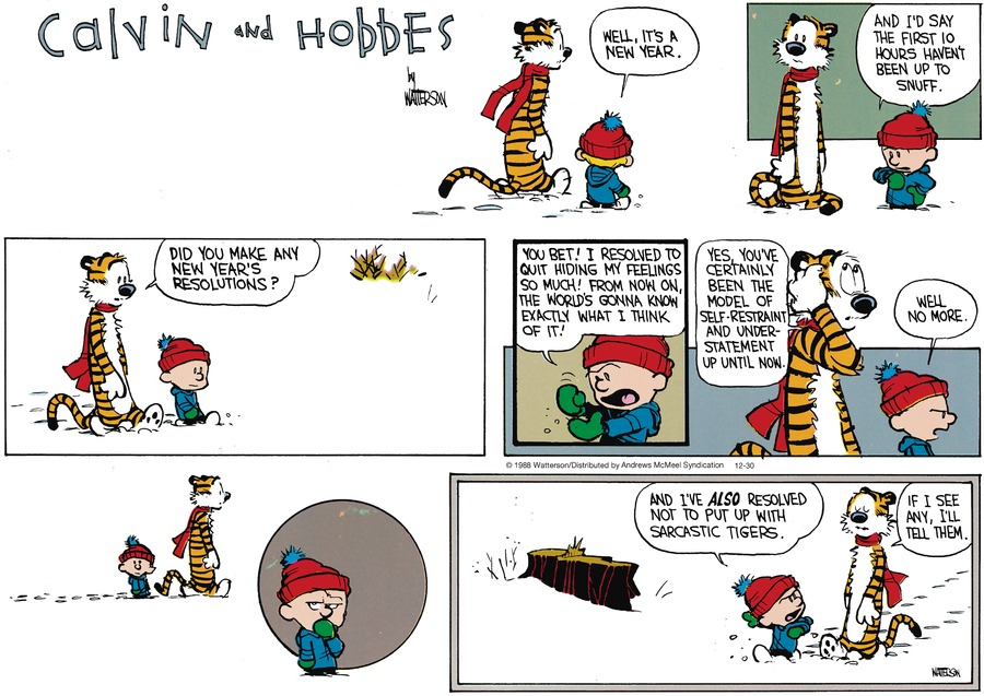Calvin and Hobbes Comic Strip for December 30, 2018