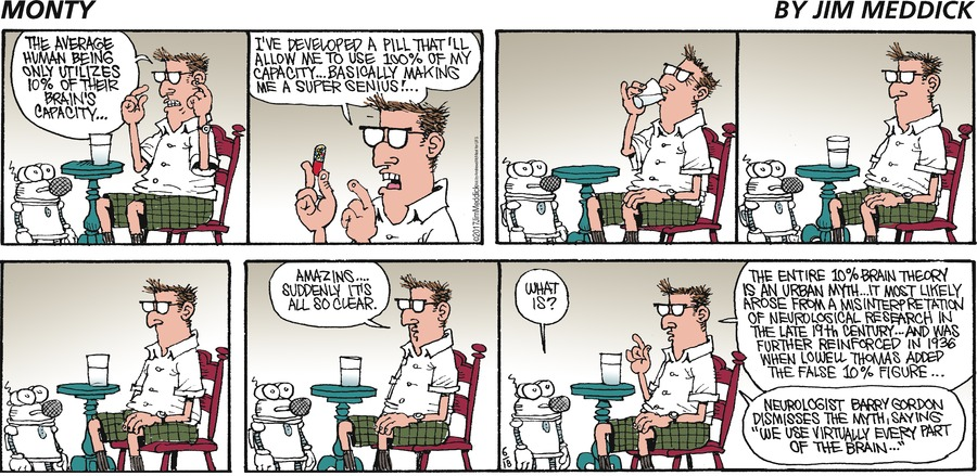 Monty Comic Strip for June 18, 2017