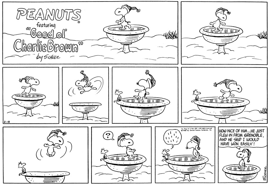"Snoopy, wearing his stocking cap, skates around on the frozen birdbath.<BR><BR> He glides.<BR><BR> He leaps in the air.<BR><BR> A bird perches on the rim of the birdbath and watches Snoopy.<BR><BR> He watches Snoopy glide.<BR><BR> The bird looks up as Snoopy jumps high in the air.<BR><BR> ""?"" Snoopy thinks, as he turns around to see the bird.<BR><BR> The bird speaks. Snoopy looks at him.<BR><BR> Snoopy smiles and thinks, ""How nice of him...He just flew in from Grenoble, and he said I would have won easily!""<BR><BR>"
