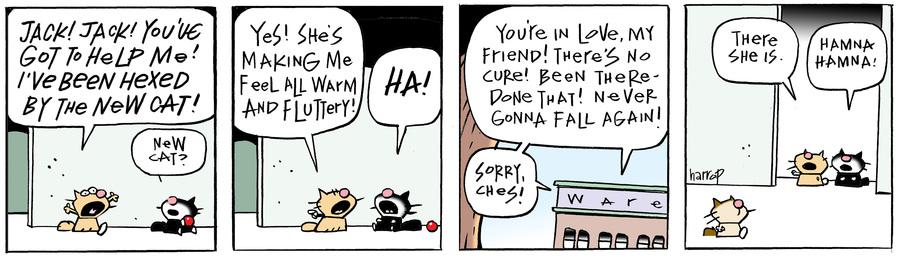 Ten Cats Comic Strip for April 09, 2020