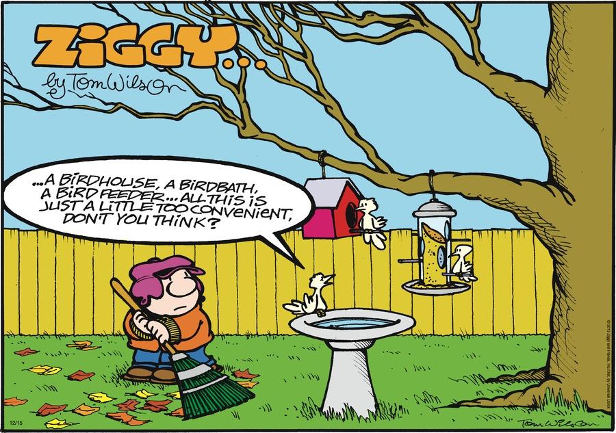 Ziggy Comic Strip for December 15, 2013