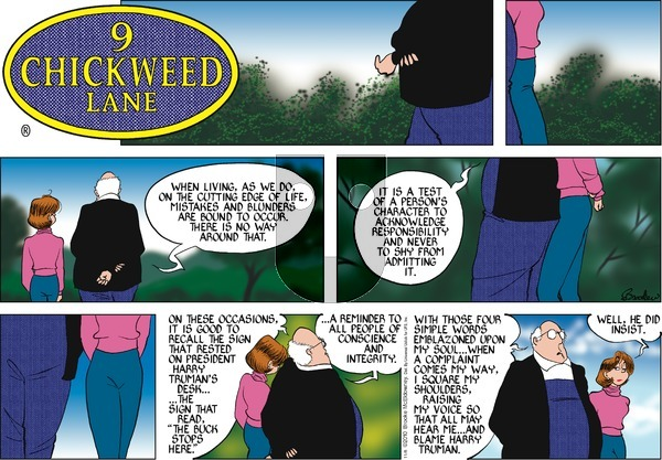 9 Chickweed Lane on Sunday November 8, 2015 Comic Strip
